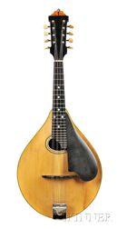 American Mandolin, Lyon and Healy, c. 1921, Style C