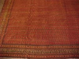Seraband Carpet