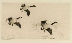 Frank Weston Benson (American, 1862-1951)  Three Geese