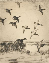 Frank Weston Benson (American, 1862-1951)      Flying Ducks