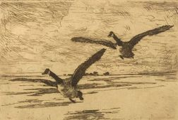 Frank Weston Benson (American, 1862-1951)  Incoming Geese