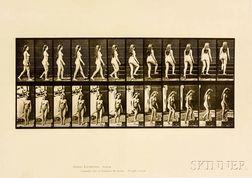 Eadweard Muybridge (British, 1830-1904)  Two Plates from Animal Locomotion: Plate 47 (Nude Woman Walking and Turning...
