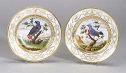 Two Paris Porcelain Ornithological Plates