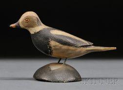 Miniature Old Squaw Drake
