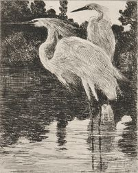 Frank Weston Benson (American, 1862-1951)      Snowy Herons