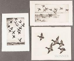 Frank Weston Benson (American, 1862-1951)      Three Large Images of Water Fowl: Flying Widgeon