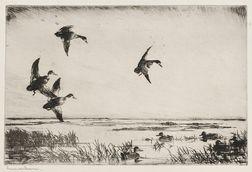 Frank Weston Benson (American, 1862-1951)      Swinging In