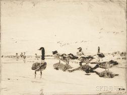 Frank Weston Benson (American, 1862-1951)      Wild Geese Resting