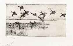 Frank Weston Benson (American, 1862-1951)      Redheads Coming