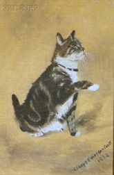 Gladys Emerson Cook (American, b. 1899)      The Tabby