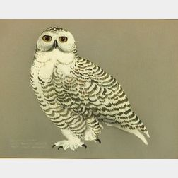James Houston (Canadian, b. 1921)  Snowy Owl