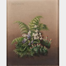 American School, 19th Century      Spring Woodland Flowers and Ferns