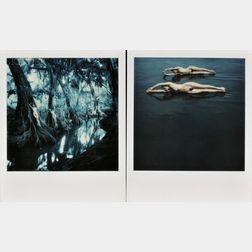 Pete Turner (American, b. 1934)      Three Images: Swamp