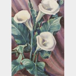American School, 20th Century  Still Life with Calla Lilies