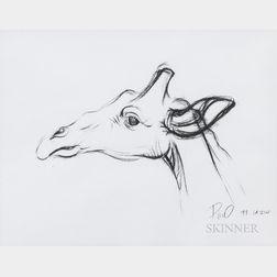 American School, 20th/21st Century      Giraffe Sketch.