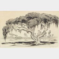 Alfred Heber Hutty (American, 1877-1954)    Spanish Moss.