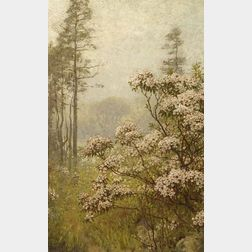 Anna Richards Brewster (American, 1870-1952)  Landscape with Pink Mountain Laurel