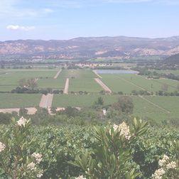 Henschke Mount Edelstone Keyneton Vineyard Shiraz 1998, 8 bottles