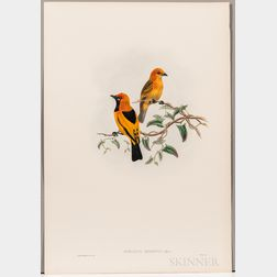 Gould, John (1804-1881) and William Matthew Hart (1830-1908) Six Ornithological Prints.