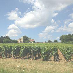 Chateau de Beaucastel   Châteauneuf du Pape   2005