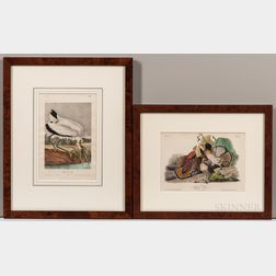 Audubon, John James (1785-1851) Two Octavo Ornithological Chromolithographic Plates.
