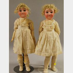 Twin Bisque Socket Head Handwerck Dolls