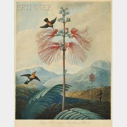 Joseph Constantine Stadler, engraver (British, 18th/19th Century), After Philipp Reinagle (British, 1749-1...