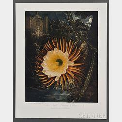 Thornton, Robert John (1768-1837) The Temple of Flora.