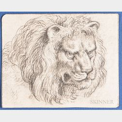 Dutch or Flemish School, 17th Century      Head of  a Male Lion