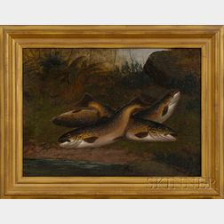 American School, 19th Century      Still Life with Brown Trout.