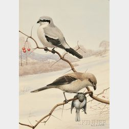 Earl Lincoln Poole (American, 1891-1972)      Birds of Prey