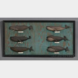 Framed Plaque with Six Carved and Painted Whale Specimens