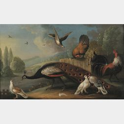 Manner of Melchior de Hondecoeter (Dutch, 1636-1695)      Still Life with Peacock and Fowl