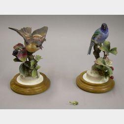 Pair of Royal Worcester Porcelain Indigo Bunting