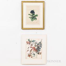 Six Prints