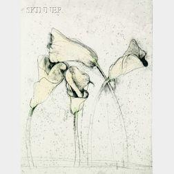 Jim Dine (American, b. 1935)      Yellow Calla Lilies