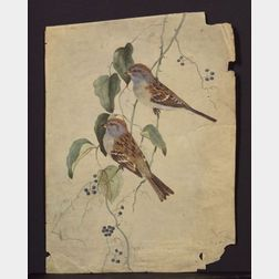 Louis Agassiz Fuertes (American, 1874-1927)    Lot of Two Bird Studies