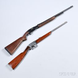 Two .22 Caliber Rifles