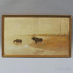 Charles Drew Cahoon (American, 1861-1951)      Moose