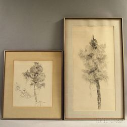 Sylvia Manning (American, 20th Century)      Two Ink Drawings of Flora: Cat-O-Nine Tails
