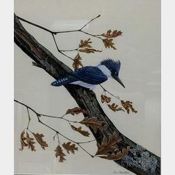 Ann Blechstein (American, 20th/21st Century)      Kingfisher