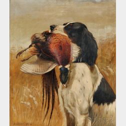 Alexander Pope (American, 1849-1924)      Setter with Pheasant