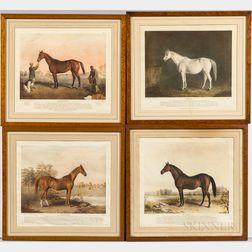 Seven Framed Equestrian Prints