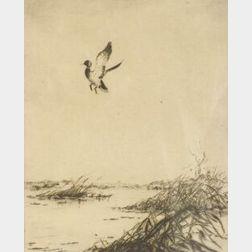 Canadian School, 19th Century  Duck in Flight.