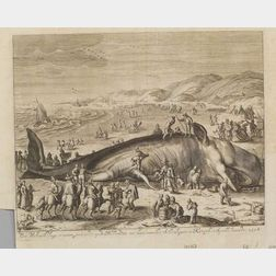 Early Engraving of a Beached Whale