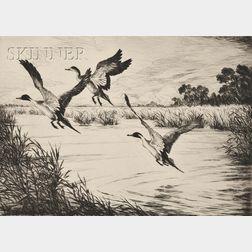 Hans Kleiber (German/American, 1887-1967)      Disturbed Pintails