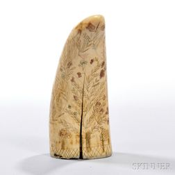 Small Scrimshaw-decorated Whale's Tooth