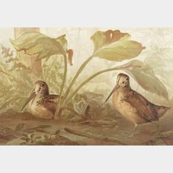 After Alexander Pope Jr.  Lot of Three Prints of Waterfowl and Game Birds.