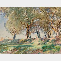 John Singer Sargent (American, 1856-1925)      Olive Grove