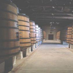 Luce 1996, 6 bottles